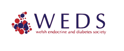 Welsh Endocrine and Diabetes Society